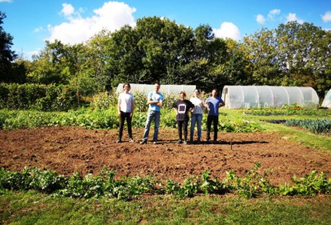 volunteers from Morgan McKinley at Elm Tree Farm
