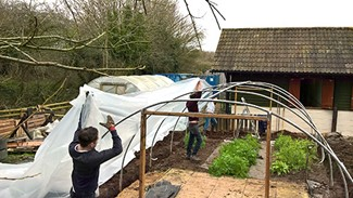 Greenfields Polytunnel Repair By Burges Salmon Volunteers